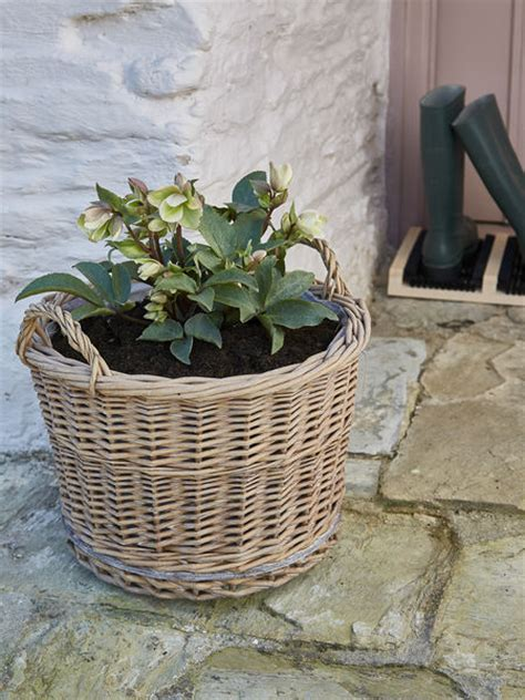 Willow Planters Uk by Willow Planter On Wheels