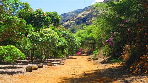 Koko Crater Botanical Garden Oahu Kmb Travel Blog Botanical Garden Oahu