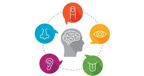 imagenes marketing sensorial 191 c 243 mo utilizar todos los sentidos para hacer un buen
