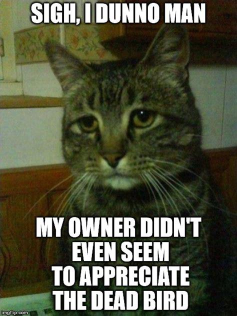 Depressed Guy Meme - depressed cat meme imgflip
