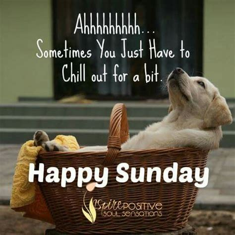 Sunday Top by Top 26 Sunday Quotes Quoteshumor