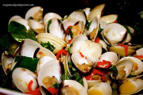 Kerang Putih resep kerang putih masak cabe dan daun kemangi resep