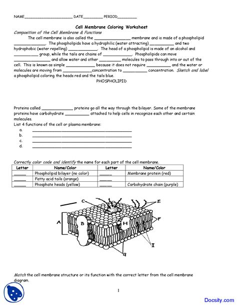 E Bio Worksheet Answers by Cell Membrane And Tonicity Worksheet Answers Abitlikethis