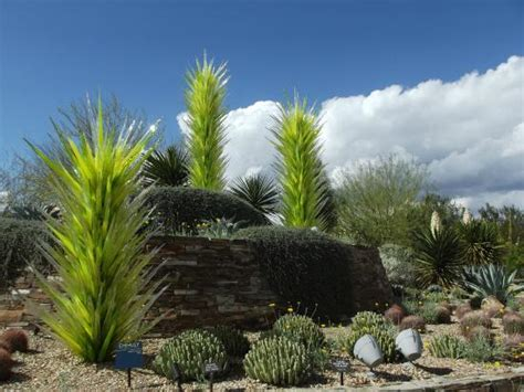 3 Days In Phoenix Travel Guide On Tripadvisor Desert Botanical Garden Free Day