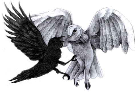 hey y owls sarahwoodart the second to last one crow vs