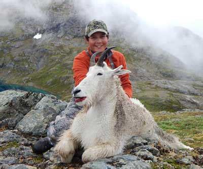 billy  nanny mountain goats featured  video alaska
