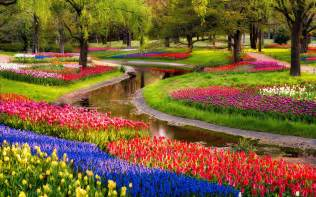 beautiful garden of flowers wallpaper
