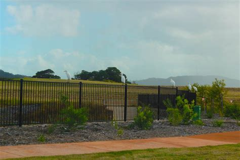 blibli com acoustic timber fencing at cutters ridge bli bli
