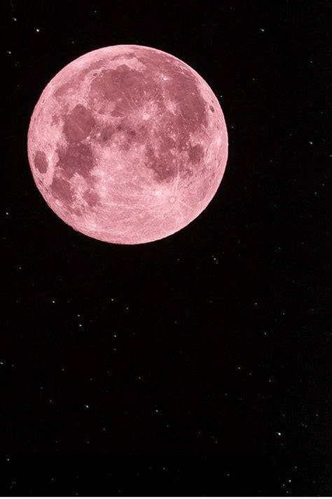 what is a pink moon pink moon