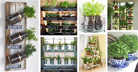 herb garden ideas  designs