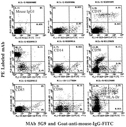 mabs study section human blood dendritic cell like b cells isolated by the