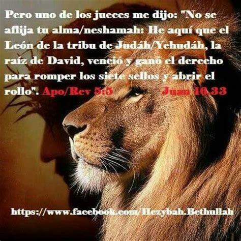 imagenes de leones con versiculos biblicos 88 best vida en cristo images on pinterest