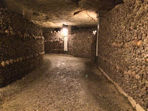 the remains of the paris catacombs the last adventurer