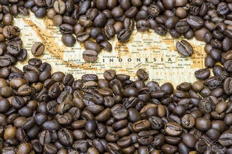 popular coffee beans  indonesia wholesale