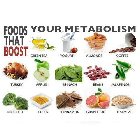 Food Broaden Your Culinary Experience by How To Increase Metabolism Learn How To Increase Your