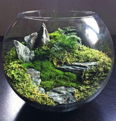 Garden Terrarium Terrarium Mini Ecosystem By Bioattic Houseplants
