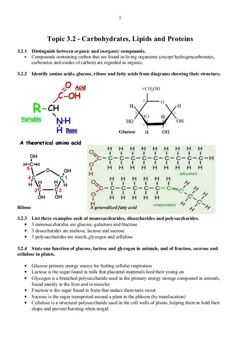 carbohydrates translate to 3 2 carbs lipids proteins notes