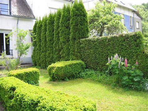 location maison avec jardin la Bourboule photos