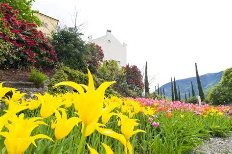 giardini terrazzati interesting with giardini terrazzati