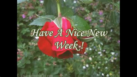 new year two week a great new week