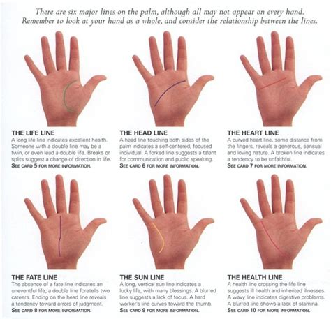 divination palmistry analyzing the mounts 25 best palmistry images on palm reading