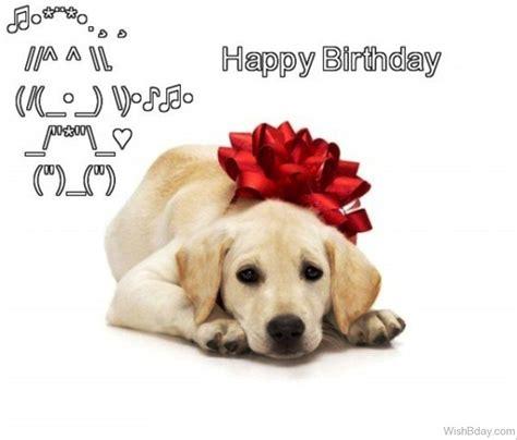 happy birthday puppy happy birthday puppy www imgkid the image kid has it
