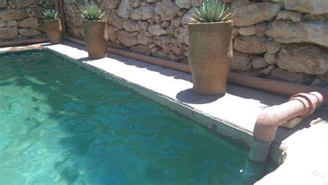 simple pool tips to build your diy natural swimming pools homesfeed