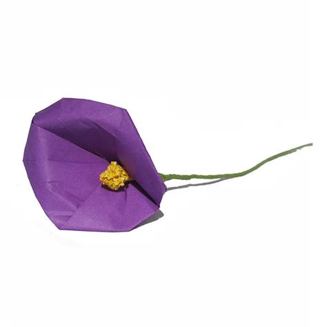 calla lilies colors origami calla various colors available