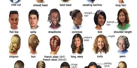 hair style esl hair vocabulary english language