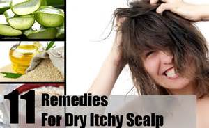 itchy scalp home remedy 11 home remedies for itchy scalp treatments