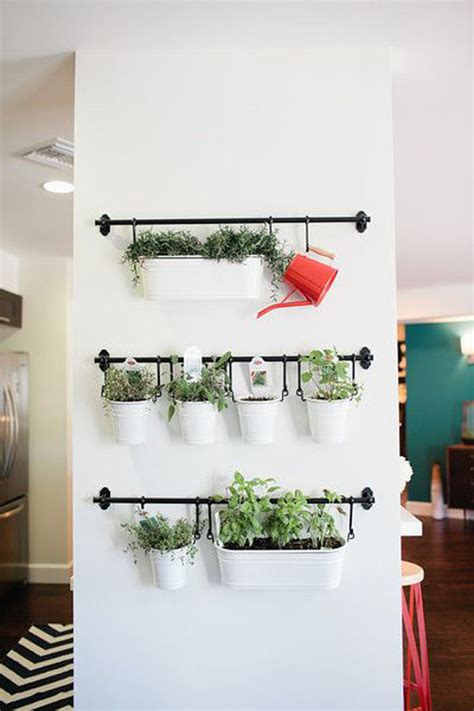indoor herb garden wall diy hanging herb garden wall