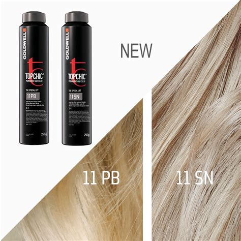 goldwell topchic color formulas goldwell topchic 11 pb 11 sn goldwell hair color