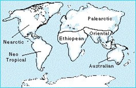 evolution evolutionary biogeography