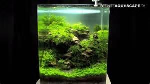 aquascaping the of the planted aquarium 2013 nano pt