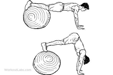 stability swiss exercise ball ab pike press workoutlabs