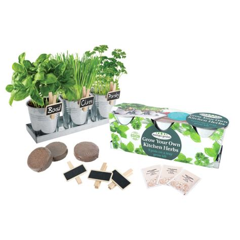 Grow Your Own Herbs by Grow Your Own Herb Kit Iwoot