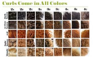 different types of hair color for americans natural frizzy hair d 233 terminer son type de cheveux