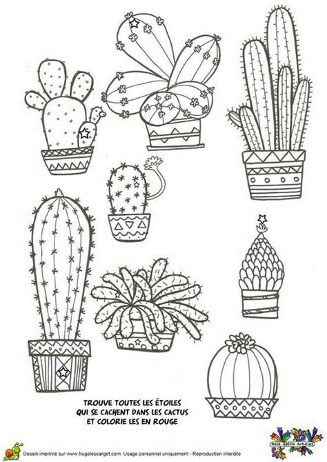 doodle type drawing кактус cacti cacti doodles and bullet