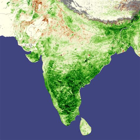 pattern of agriculture and types of forest in bangladesh record crops in india natural hazards