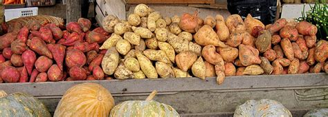 what color are sweet potatoes colors sweet potatoes chef marian