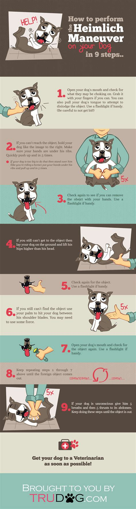 how to do the heimlich on a printable heimlich maneuver www pixshark images galleries with a