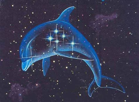 the whale a tale of galactic travel and books 17 best images about space dolphins on