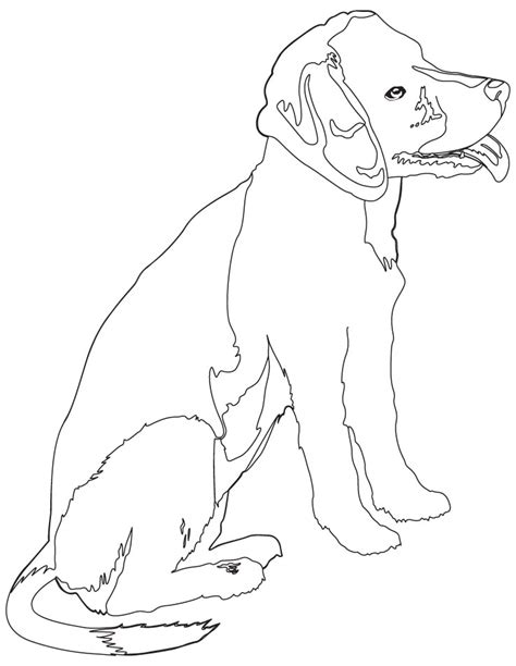 beagle puppy coloring page beagle puppy coloring sheets coloring pages