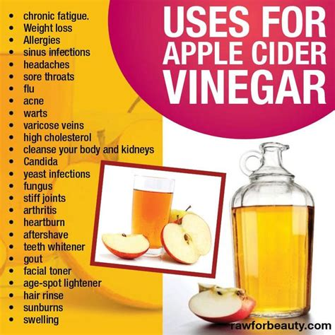 Apple Cider Vinegar Kidney Detox by Uses For Apple Cinder Vinegar Chronic Fatigue Weight