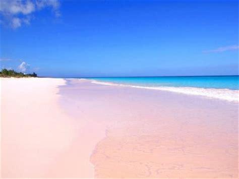 pink sand beach pink sands beach