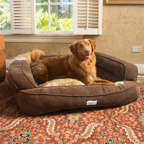 orthopedic dog beds large memory foam dog bed extra large orthopedic dog beds