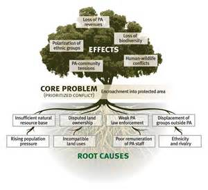 problem tree multi stakeholder partnerships