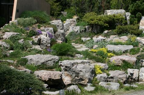 Tips To Build A Beautiful Rock Garden At Home Artenzo Gardens With Rocks