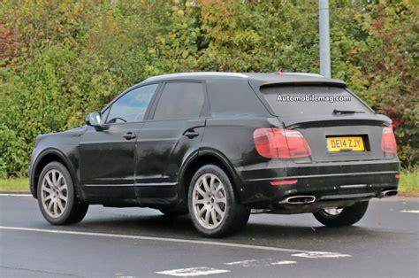 bentley suv 2014 bentley suv spied testing again this time near nurburgring