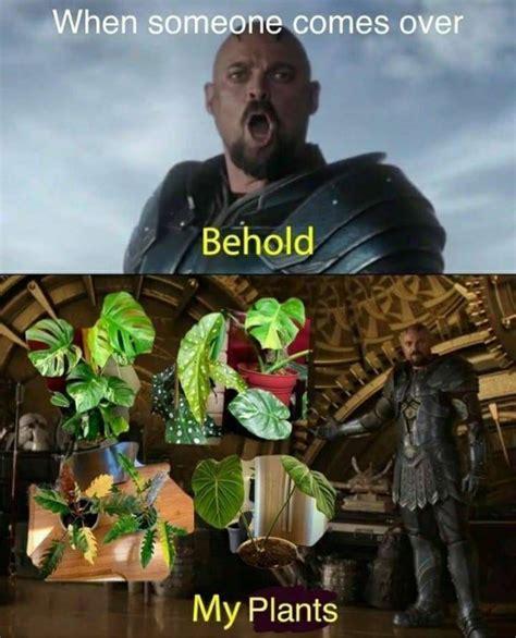 plant memes  pics